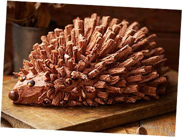 Hedgehog Birthday Cake - Recipes | Primary Times
