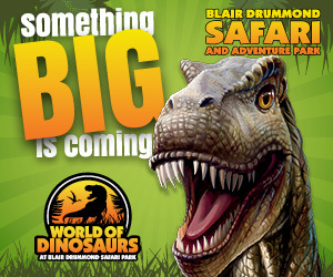 Advert: https://www.blairdrummond.com/news/dinosaurs-are-coming