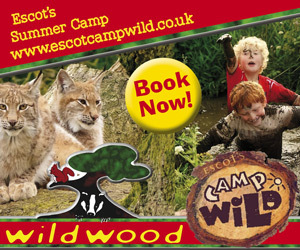 Advert: http://www.escotcampwild.co.uk