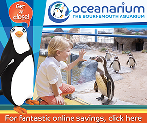 Advert: http://www.oceanarium.co.uk/admission-prices