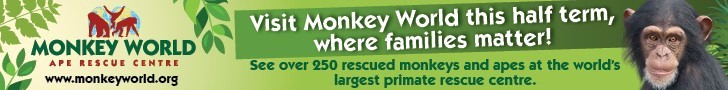 Advert: http://www.monkeyworld.org/
